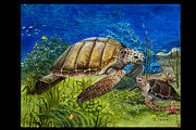 Sea Turtles Painting Originals - Sea Turtles at Play by Tricia Eisen
