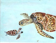 Lin Deahl - Sea Turtles
