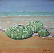 Yvonne Ayoub - Sea Urchins