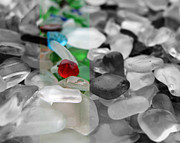 Red Photographs Glass Art Posters - Seaglass No. 2 in Black and White Poster by Robin Matterfis