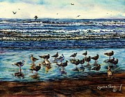 Pride Paintings - Seagull Get-together by Cynthia Pride