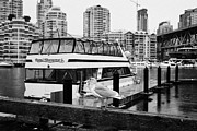 False Creek Prints - seagull walking in front of False Creek granville street bridge and waterfront apartment buildings o Print by Joe Fox