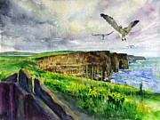 Sea Birds Framed Prints - Seagulls at the Cliffs of Moher Framed Print by John D Benson