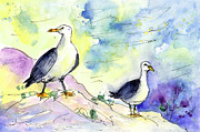 Miki De Goodaboom - Seagulls in Calpe in Spain