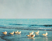 Violet Damyan - Seagulls On The Beach