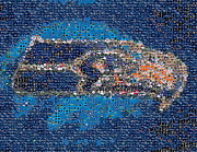 Paul Van Scott - Seahawk Mosaic