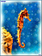 Fish Digital Art Originals - Seahorse by Daniel Janda