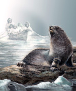 Wildlife Imagery Posters - Seal on Icy shores Poster by Gina Femrite