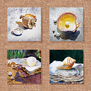 Seashell Painting Framed Prints - Seashell Collection I Framed Print by Irina Sztukowski