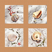 Seashell Fine Art Painting Prints - Seashell Collection II Print by Irina Sztukowski