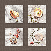 Interior Still Life Painting Metal Prints - Seashell Collection III Metal Print by Irina Sztukowski