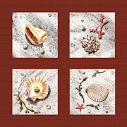 Seashell Painting Framed Prints - Seashell Collection IV Framed Print by Irina Sztukowski