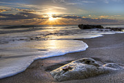Sunset Scenes. Prints - Seashell Print by Debra and Dave Vanderlaan