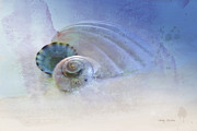 Treatment Posters - Seashell in Blue Poster by Betty LaRue