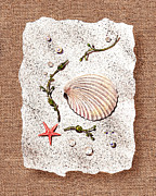 Seashell Fine Art Painting Prints - Seashell With Pearls Sea Star And Seaweed  Print by Irina Sztukowski