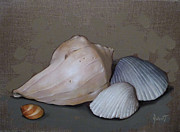 Seashells Paintings - Seashells by Clinton Hobart