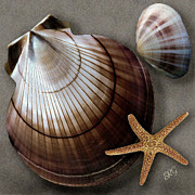 Curves Digital Art Prints - Seashells Spectacular No 38 Print by Ben and Raisa Gertsberg