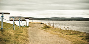 Trawler Metal Prints - Seaside path Metal Print by Tom Gowanlock