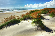Sand Dunes Metal Prints - Seaside Serenity I - Outer Banks Metal Print by Dan Carmichael