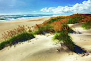 Oats Prints - Seaside Serenity II - Outer Banks Print by Dan Carmichael