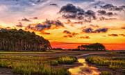 Eastern Shore Posters - Seaside Sunrise Poster by Michael Pickett