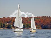 Seasonal Sailing Print by Susan Leggett