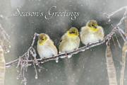 Wintry Digital Art Posters - Seasons Greetings Poster by Lori Deiter