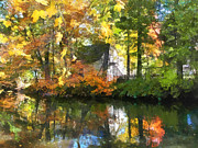 Houses Art - Seasons - White House by Lake in Autumn by Susan Savad