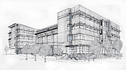 Seattle Drawings Acrylic Prints - Seattle University Law School Acrylic Print by Inger Hutton