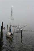 Lynn Jordan - Seaweed and a Sailboat