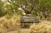 Stuart Litoff - Secluded Bench