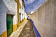 Potted Plants Prints - Secluded Cobblestone Street in the Medieval Village of Obidos II Print by David Letts