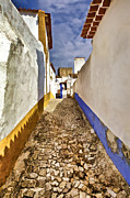 Potted Plants Prints - Secluded Cobblestone Street in the Medieval Village of Obidos III Print by David Letts