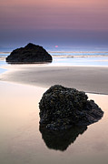 Tidepool Framed Prints - Second Rock from the Sun Framed Print by Mike  Dawson
