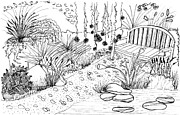 Container Drawings Prints - Secret Bench Print by Elizabeth Thorstenson