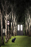 Haunted Mansion  Paintings - Secret forest dwelling by Nirdesha Munasinghe