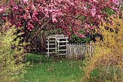 Brenda Giasson - Secret Garden