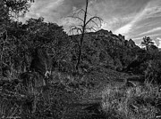 Fishing Creek Prints - Secret Wilderness Sedona Arizona Print by Nadine and Bob Johnston