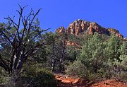Shades Of Red Framed Prints - Sedona Contrast Framed Print by Carol Komassa
