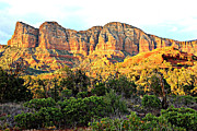 Red Rocks Of Sedona Prints - Sedona Green and Gold Print by Carol Groenen