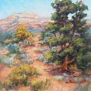 Sandy Farley - Sedona Trail