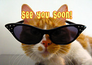 See You Framed Prints - See You Soon Cool Cat Framed Print by Michelle Dokos