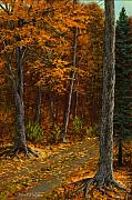 Autumn Scenes Originals - Seldom Used by Frank Wilson