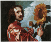 Portrait With Still Life Framed Prints - Self-Portrait with a Sunflower Framed Print by Anthony Van Dyck