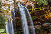 Downtown Franklin Prints - Selfie at the Waterfall Print by Donna Vasquez