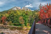 Mary Almond - Seneca Rocks in Autumn