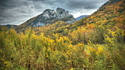 Pendleton County Photos - Seneca Rocks by Jaki Miller