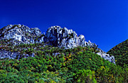 R Posters - Seneca Rocks National Recreational Area Poster by Thomas R Fletcher