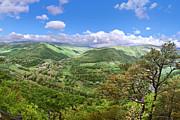 Mary Almond - Seneca Rocks Overlook