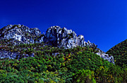 1987 Metal Prints - Seneca Rocks with the Gendarme Metal Print by Thomas R Fletcher